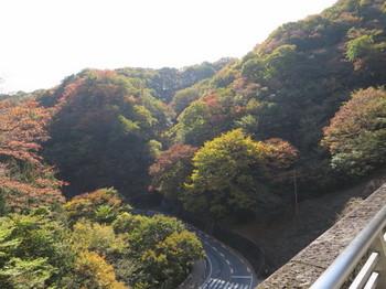 碓井第三橋梁から下を見下ろす