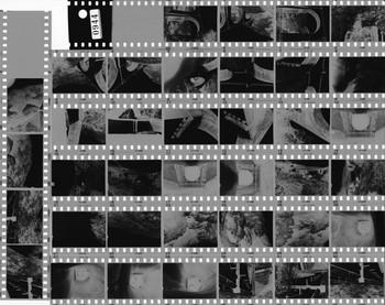 モノクロフィルムをそのままスキャンした