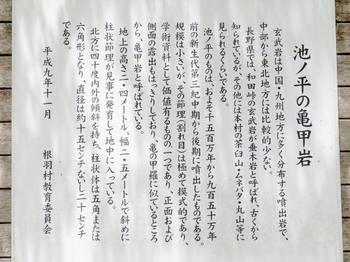 亀の甲石の説明看板