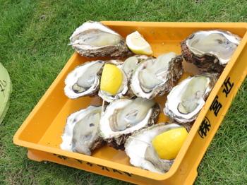 今月限りの岩牡蠣