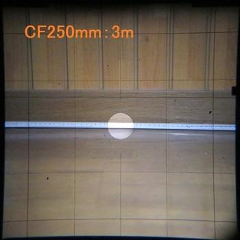 CF250mm時のファインダー映像