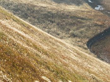 上から見る曾爾高原