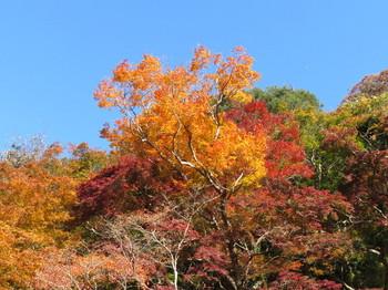 談山神社の紅葉